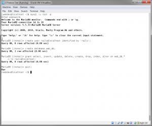 Create Railo User
